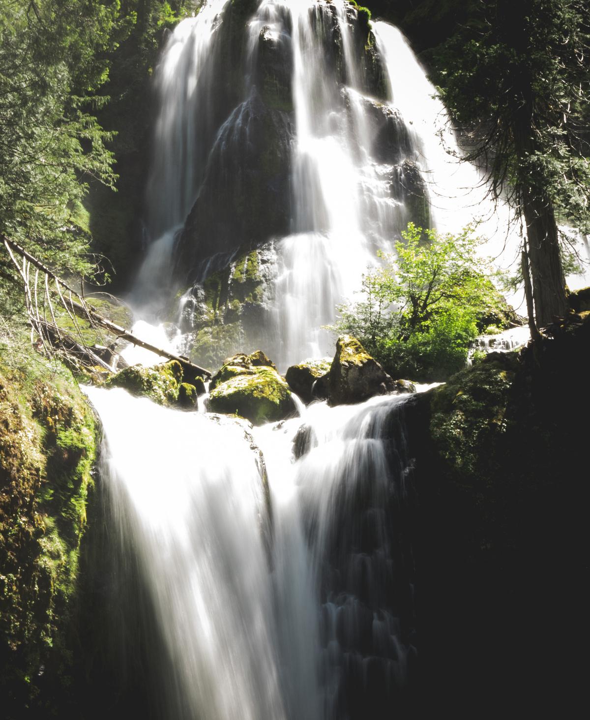 falls creek falls trails