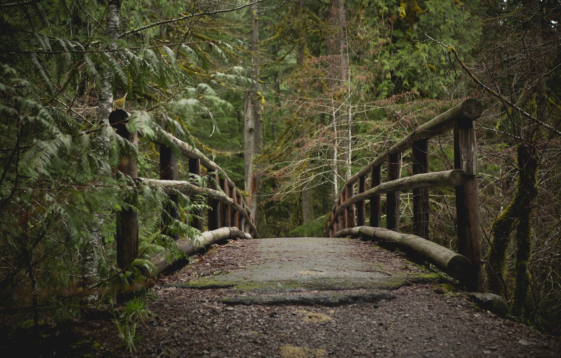 bridge access