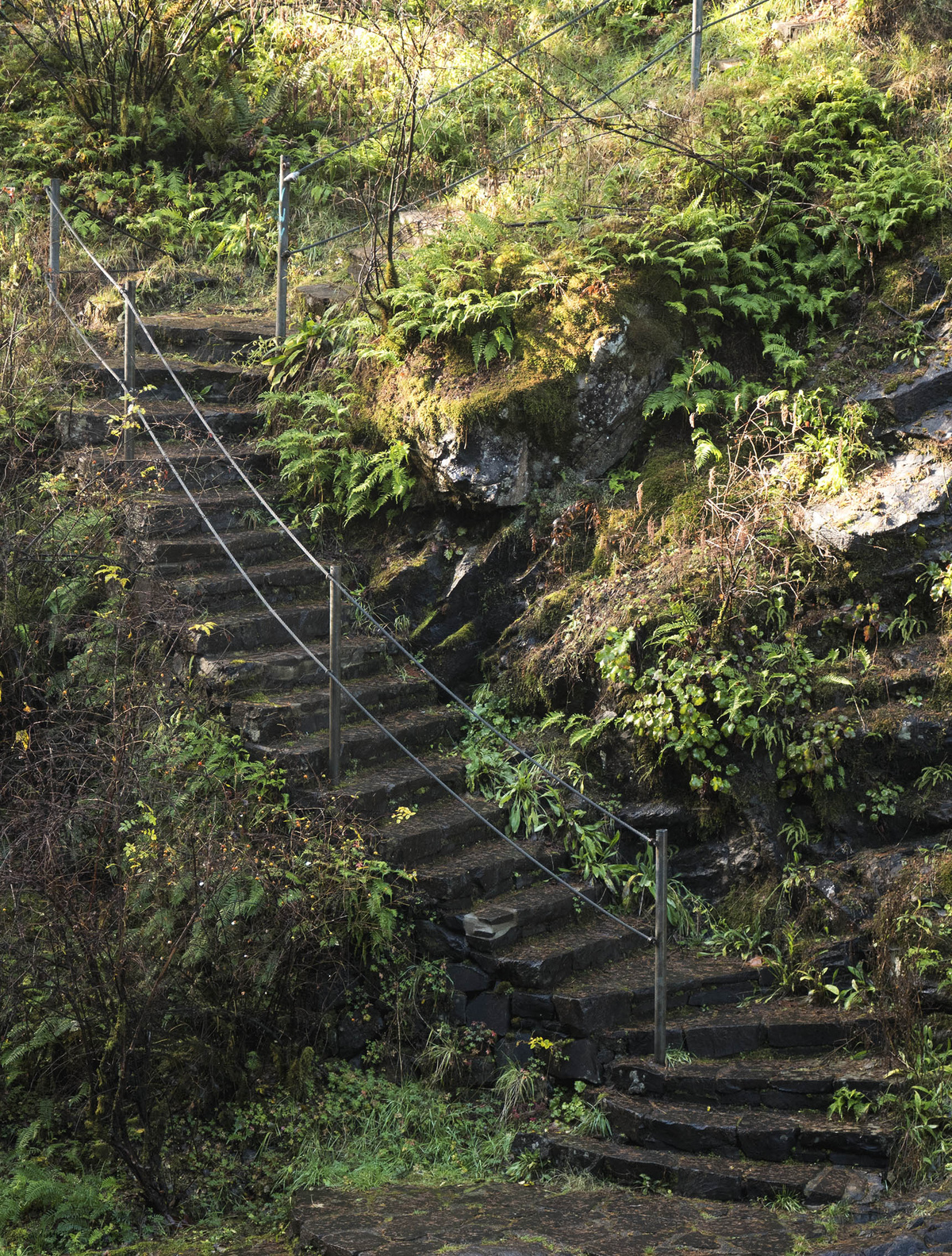 waterway stairs