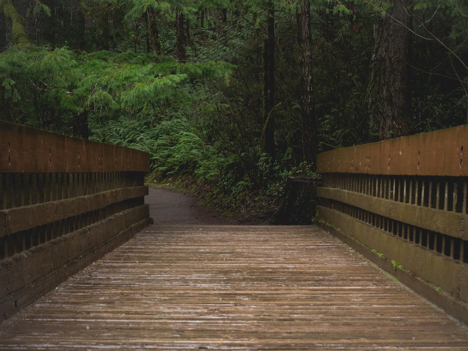 one slick bridge