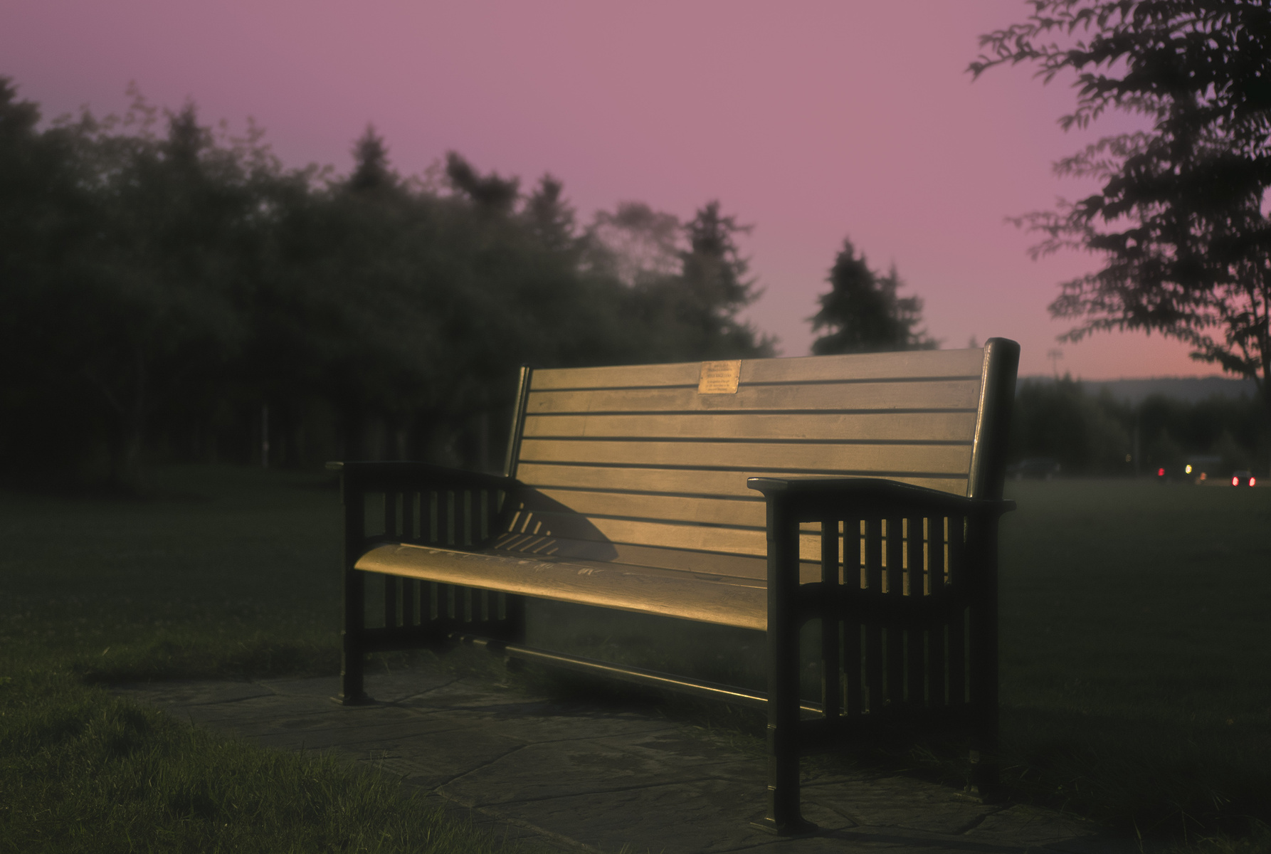 smeary bench