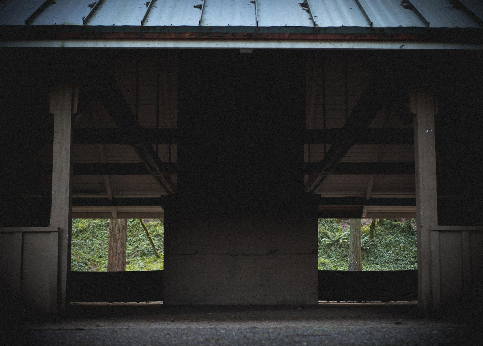 overgrown pavilion