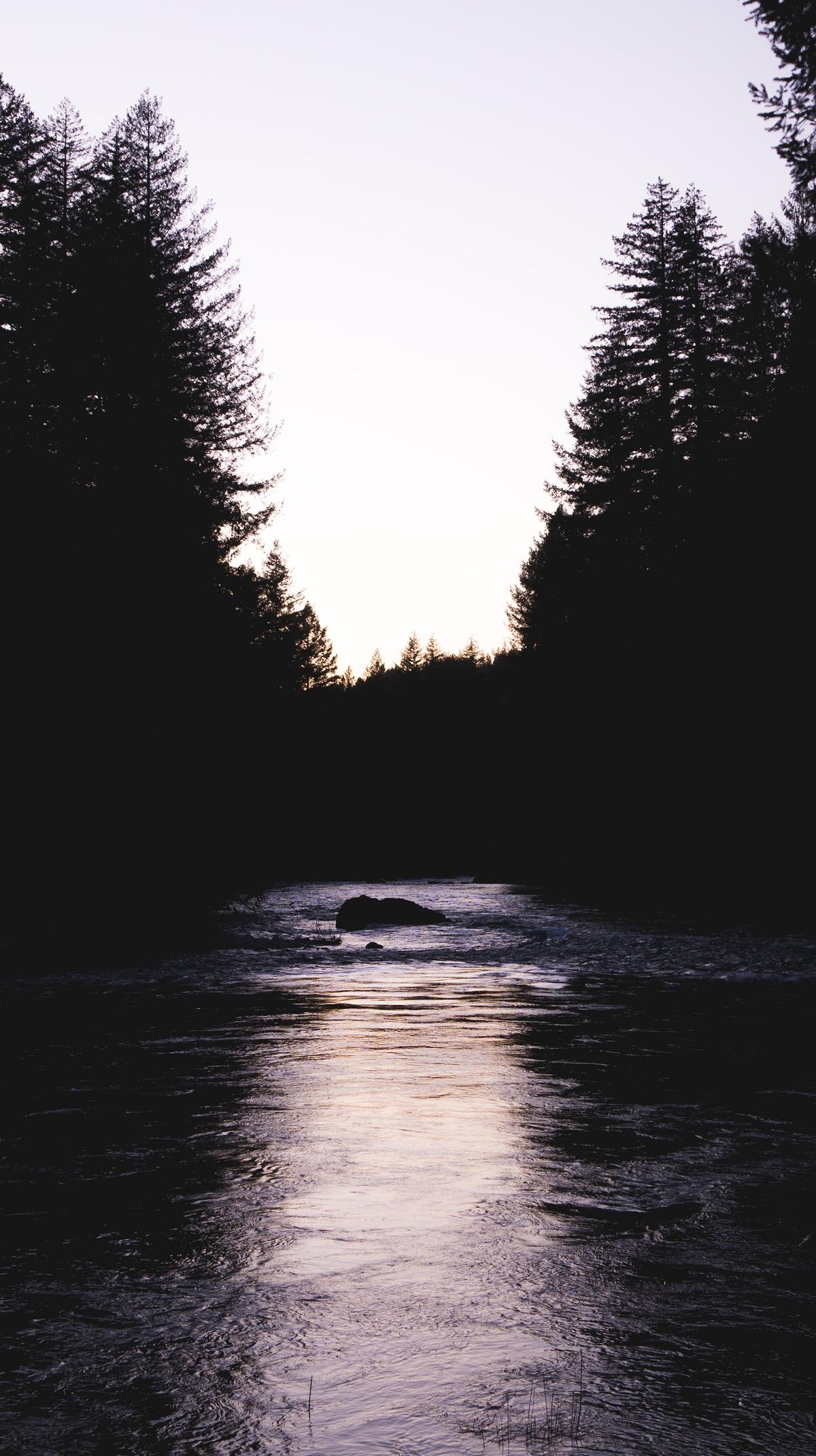 reflected creek